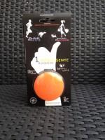 Hundeleine, automatisch einziehend, orange